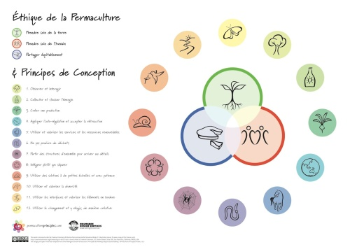 pc_principles_poster_fr-small